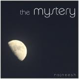 the mystery rajneesh