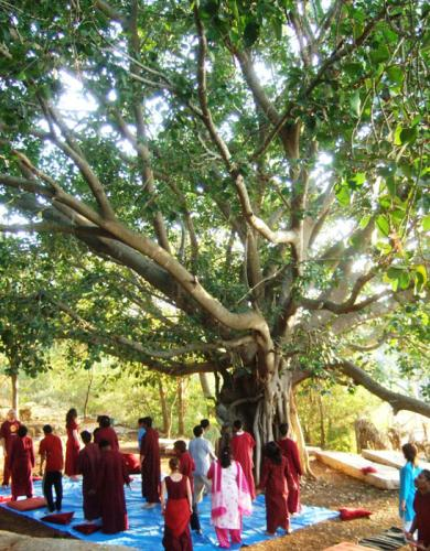 bangalore 2009 swami ozen rajneesh 00029